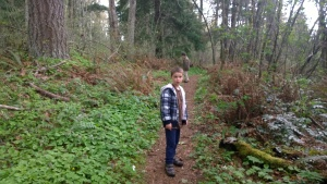 Easy walking trail, long, flat, perfect for walking the dog.  But there are lots more, closer trails to Seattle.
